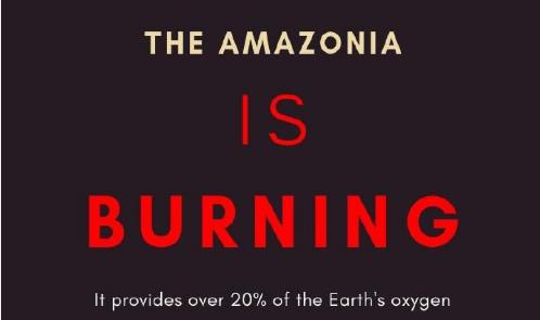 比亚马孙大火更严重 地球这个区域正遭受更大浩劫