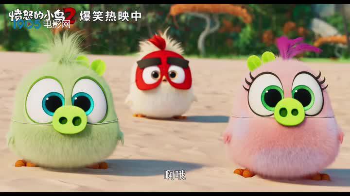 """《愤怒的小鸟2》曝""""冲得更高""""预告"""