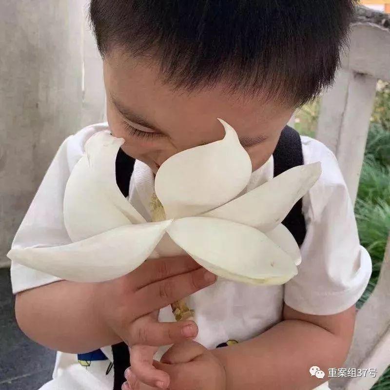 ▲张萌的女子两岁年夜的时分。受访者供图