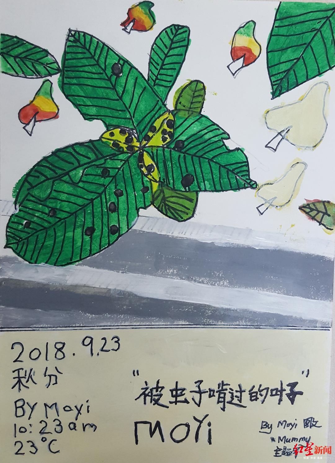 成都这群一年级小学生作700多幅写绘 稚嫩文笔记录二十四节气