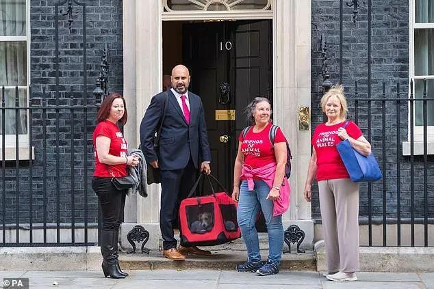 鲍里斯养狗,英国首相府即将上演猫狗大战!
