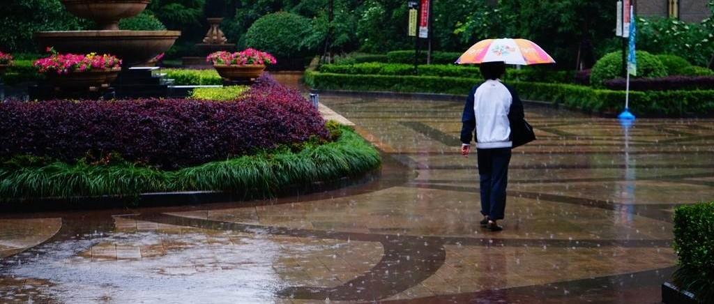 未来几天降雨持续,低温13度!网友:我需要一条秋裤