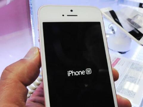 外媒:苹果明年春季将发布新款低价iPhone
