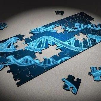 宏基因组病原体检测火起来后,我们访谈了这个行业的先行者