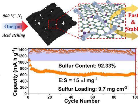 高负载大倍率锂硫电池的正极异质掺杂骨架研究获系列进展