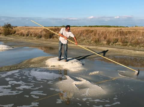 天天想着海水淡化,如果海水真的变成淡水了,很危险