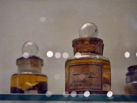 在天津外国语大学里,藏着个世界一流博物馆,内藏20余万珍贵文物