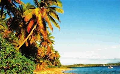 拉各斯的金色海滩