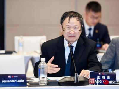 北京航空航天大学教授王湘穗:未来世界一定会脱离单一信用货币体系