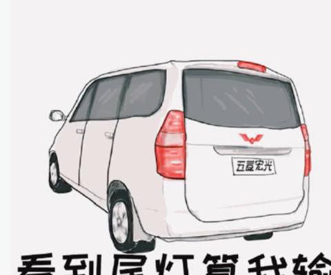视频:汽车视频:五菱宏光山路 逮虾户