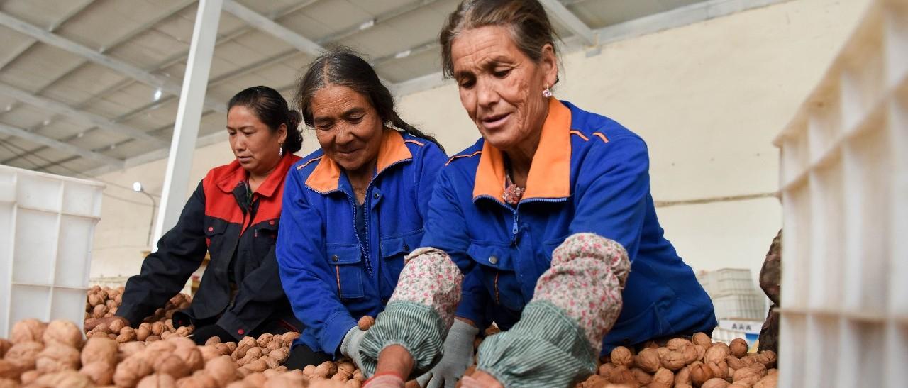 农民合作社质量提升整县推进新增120个试点,快来申报!