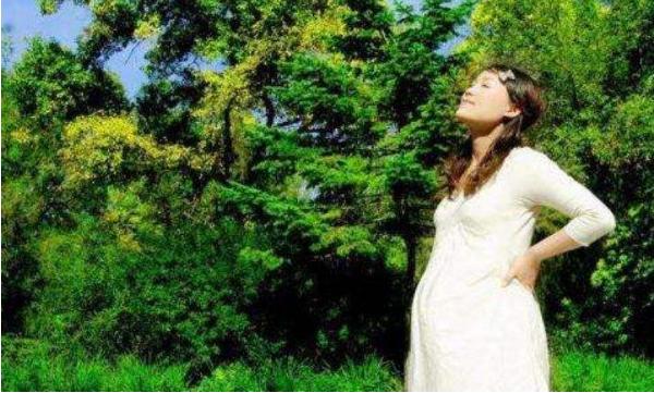 """孕期""""森林浴"""",是一种极佳的保健方法!"""