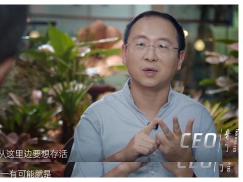 马蜂窝陈罡:自由行很美好,创业很光鲜?其实CEO的命都不值钱