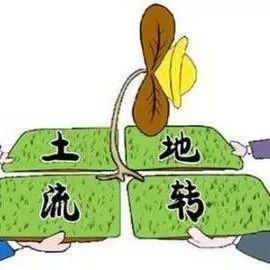 全国人大刘振伟:乡村振兴中的土地制度改革