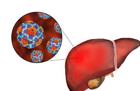 只顾乙肝不顾甲肝?这4种预防甲肝的方法,还是知道为好