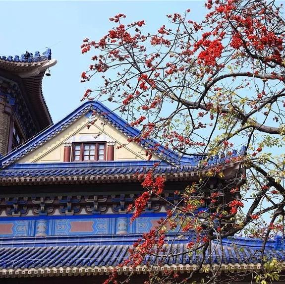没有一个人来到广州,不会沉迷于这座花城