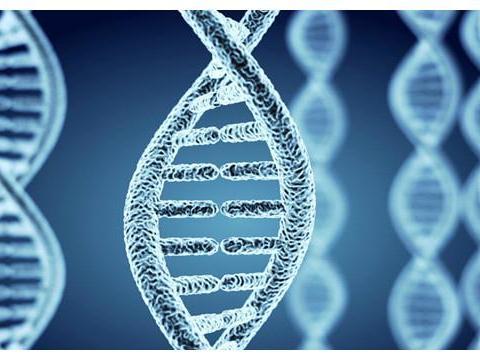 反复流产50%以上源于染色体异常,美国试管为新生儿把关