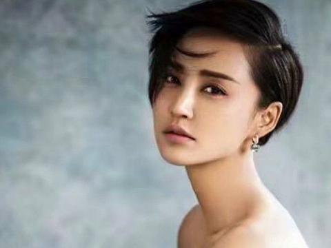 鹿晗张歆艺在线追星,周杰伦新歌一夜加半天销量累计达两千万