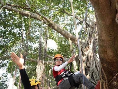 高校开爬树课,老师说很有意义,网友:我掏钱上大学你教我爬树