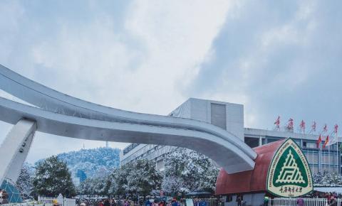 预估帖:重庆邮电大学2020年电气工程考研分数线与报录比