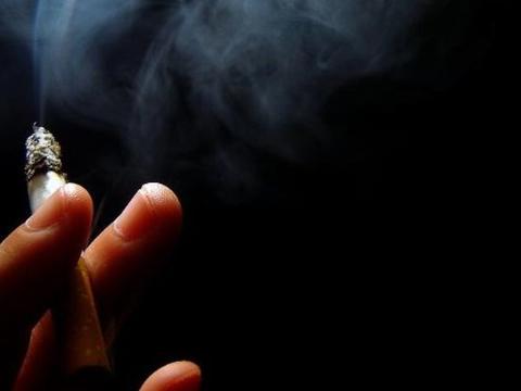 别嫌它丑,却是尼古丁的天然克星,排烟毒,清肺部