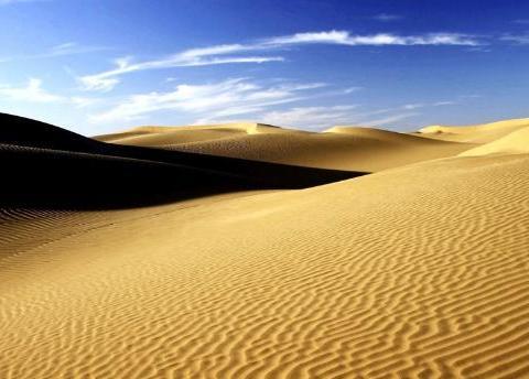 中国治沙30年沙漠变绿洲,驴友去后:这就是现实?太心寒