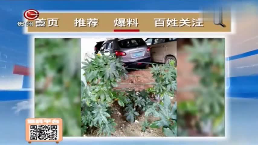 """车辆乱停,把花坛硬生生变成""""停车场""""!有关部门管管吧!"""