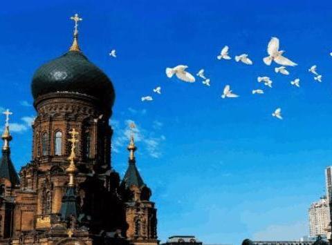 东三省王牌城市排名,吉林和大连上榜,有你的家乡吗?