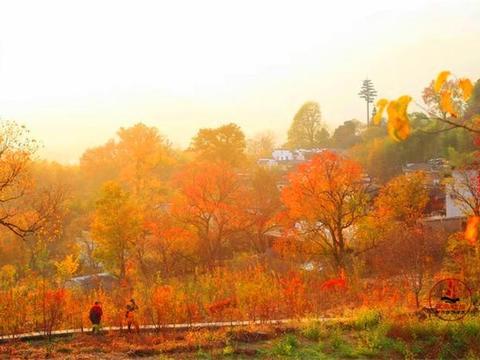 皖南的塔川,秋天的骄傲,极美的色彩天堂
