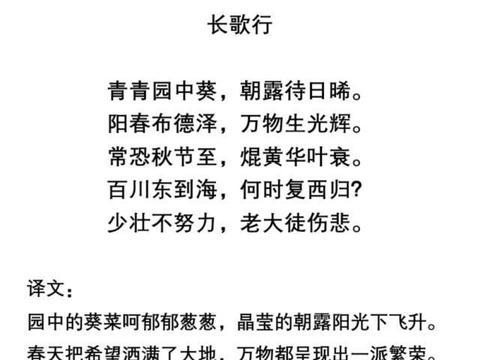 部编版五年级语文上册第5课《搭石》练习题