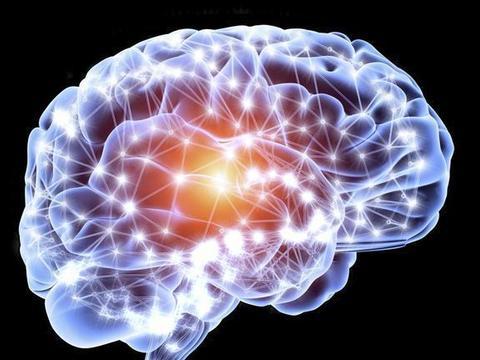 濒死时大脑活动在慢慢停止吗?研究发现,动物濒死时大脑异常活跃