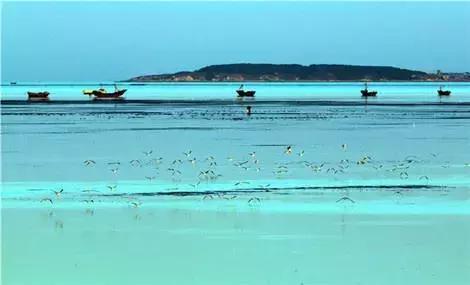 北京驾车半天时间,到辽东湾最大岛屿!观海景,吹海风,吃海鲜