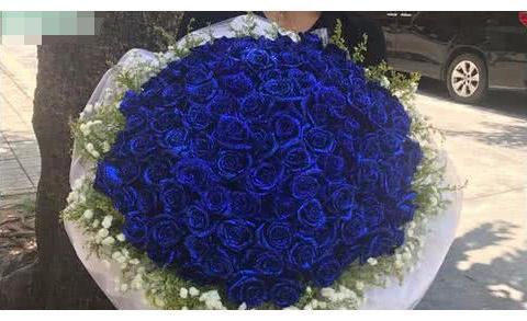心理测试:凭直觉选一簇你喜欢的玫瑰花,测你想要的爱情!