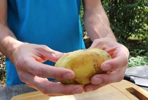 """国外男版""""李子柒"""",院子种满蔬菜水果,每天快乐得就像个孩子"""