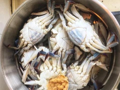 无论大闸蟹还是梭子蟹,清蒸时间是关键,掌握了