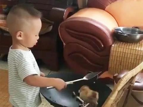 孩子要炒只鸡给妈妈吃,妈妈看到后,直接发飙了