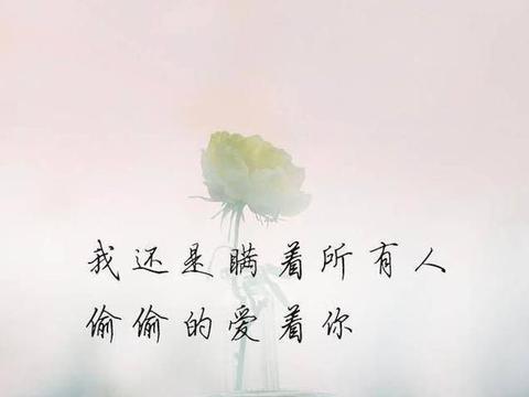 有一种爱叫孤独终老,却只能思念一生(深度好文)