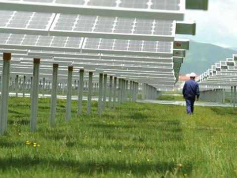 厉害了我的国!在发电站放几千只羊,解决了一个世界难题!