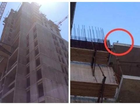 小猫被困楼顶2天,声嘶力竭的叫喊引来工人注意,被救后嗓子哑了
