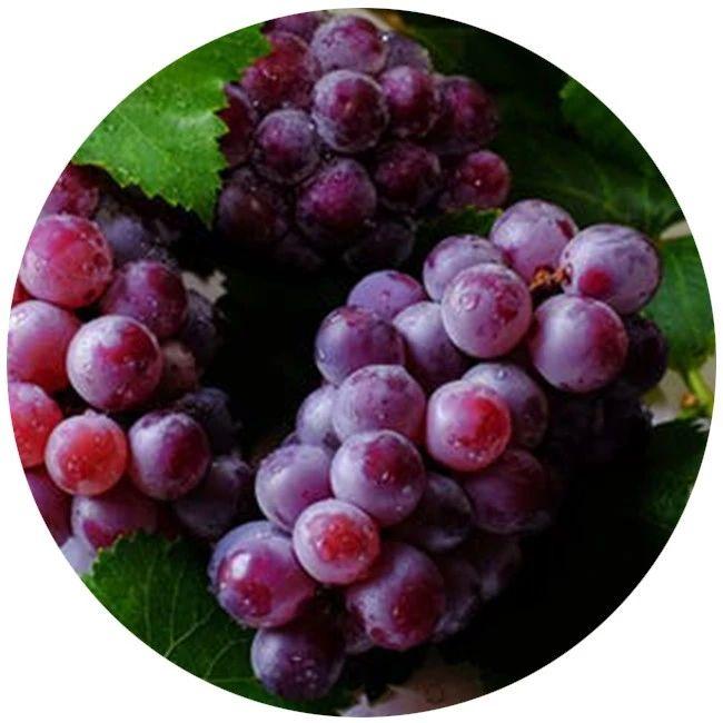 水果越甜,含糖量越高?这些常见的水果知识,很多人都不知道……