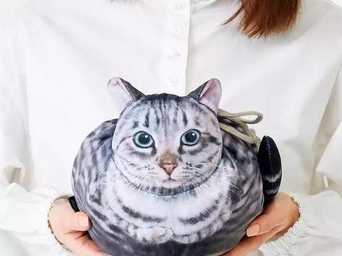 把猫咪背在背上,这猫咪包袱真的太可爱了