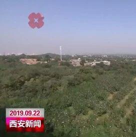 王浩在临潼区调研时强调  推进文化旅游转型升级 壮大区域特色主导产业