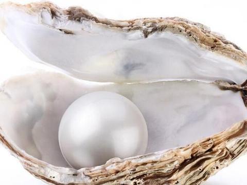 由生物所衍生的有机宝石,珍珠、琥珀、珊瑚、象牙、砗磲、煤玉