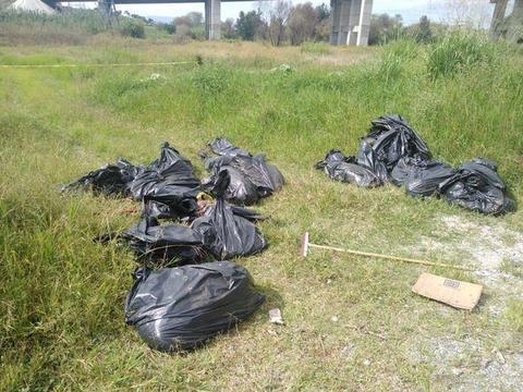 墨西哥居民发现17个黑色塑料袋,打开一看里面装满了尸块