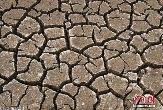 材料图:本地工夫2019年8月6日,德国埃我祸特,本地连日低温,湖火干枯地盘龟裂。