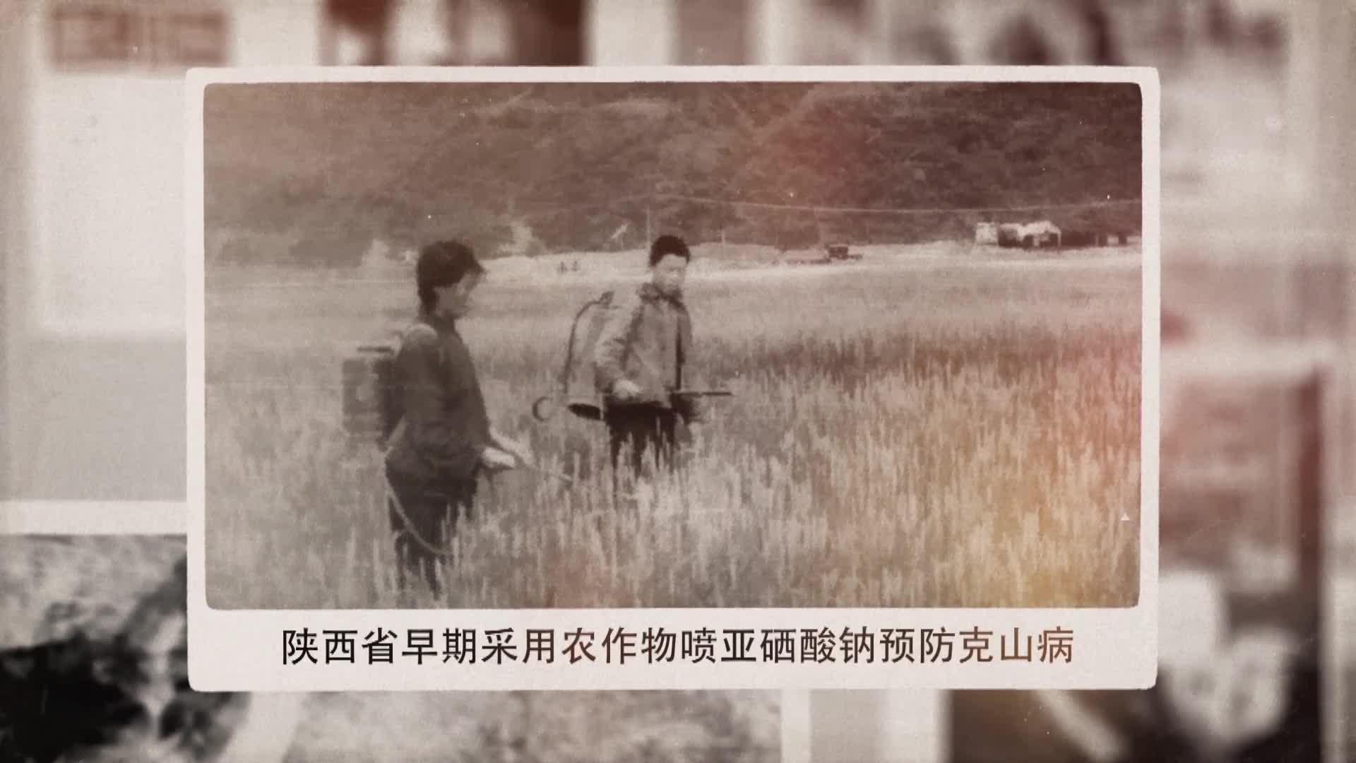 守健康初心,担防治使命 陕西省地方病防治研究所欢庆新中国成