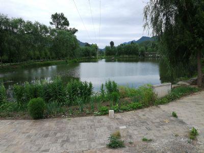 在北京山水田园租个院多少钱?百里画廊占地两亩的院子年租12000