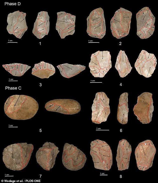 斯里兰卡发现45000年前猎猴石器,是南亚雨林最古老人造工具