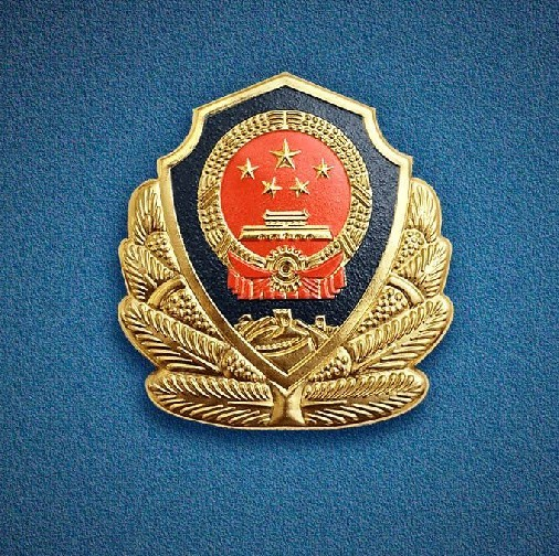 访公安部经济犯罪侦查局局长高峰:全力锻造一支履职能力更高的经侦铁军