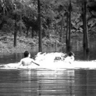 广西荔浦多名学生溺水身亡?当地警方通报辟谣!